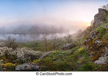 Morning landscape