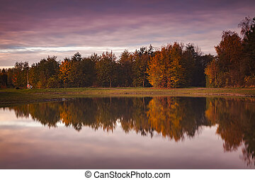 Morning light in autumn