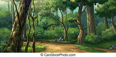 Morning light in the forest - jungle plenteous in the...