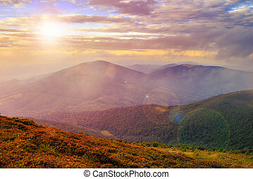 morning light on mountain slope with forest - mountain...