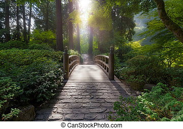 Morning Light on the Bridge