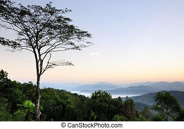 Morning Light on the hilltop.