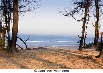 Morning light - Varca beach, Goa - Morning light across...