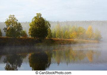 Morning mist along the river