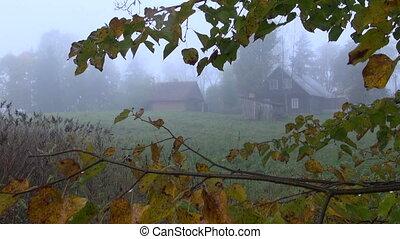 morning mist in old farm