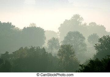 Morning mist in rural Italy. Ponzano Romano in summer