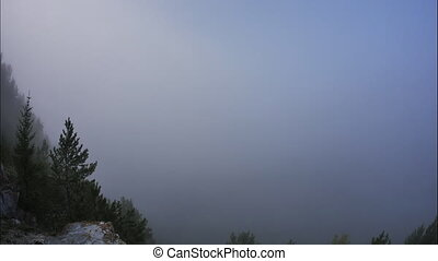 morning mist in the mountains, forest, time lapse