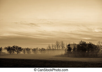 Magical morning mist foliage on a beautiful countryside scenery landscape