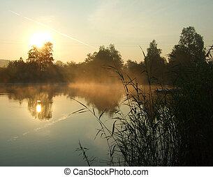 morning on a lake