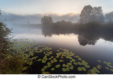 Morning on the bank of autumn lake