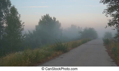Mystical fog on a country road - Morning or evening Mystical...