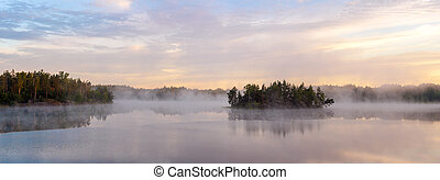 forest lake with a fog