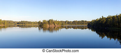 morning panorama on a forest lake