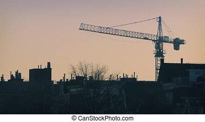 Morning Skyline Birds And Crane