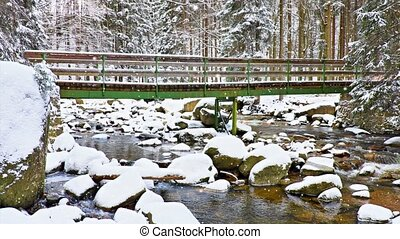 Morning snowing in winter forest. Tourist path. Wooden...