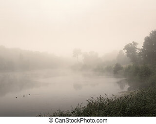 Morning summer landscape with fog over the lake
