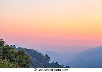 Morning sunrise foggy