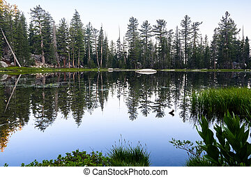 Morning view of a lake, with perfect reflection of trees in the still water surface, Yosemite National Park, Sierra Nevada mountains, California