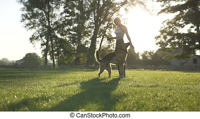Morning Walking Dog - Enjoy Some Leisure Time Outdoors With...