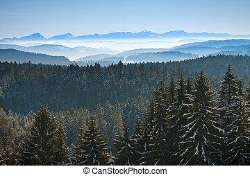 Morning winter calm mountain landscape