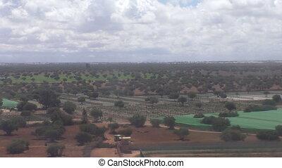 Moroccan agricultural landscape