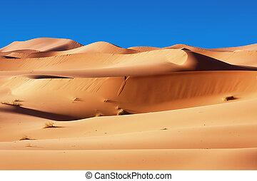 Moroccan desert dunes