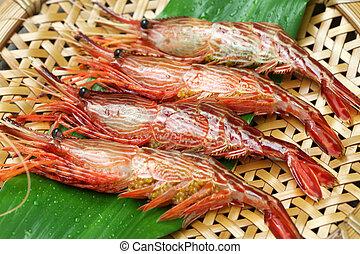 morotoge shrimp, shima ebi, japanese seafood isolated