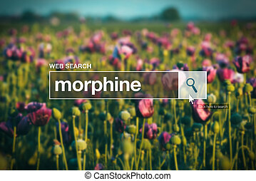 Morphine in internet browser search box, opium poppy field in background
