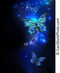 morpho butterfly in the dark