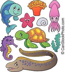 morskie życie, temat, zbiór, 1