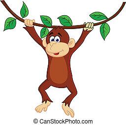 morsom, abe, hængende