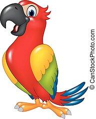 morsom, cartoon, papegøje, isoleret