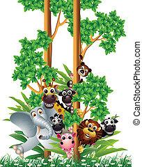 morsom, cartoon, samling, dyr