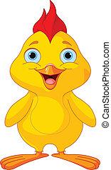 morsom, chick