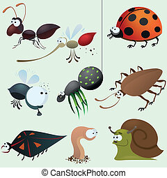 morsom, insekt, sæt