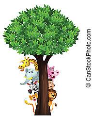 morsom, safari, dyr, cartoon
