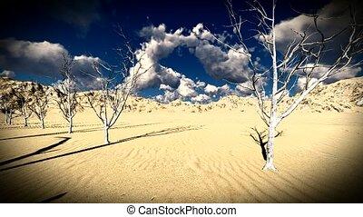 mort, désert, arbres