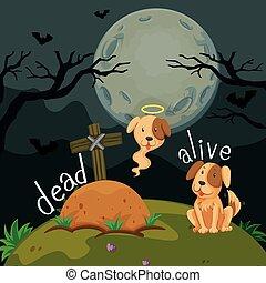 mort, mots, opposé, vivant