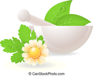 Mortar with herbs and camomile. Alternative medicine, vector...