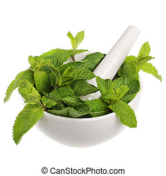 Mortar with mint isolated on white background