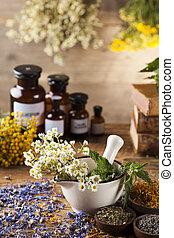mortel, alternativ medicin, och, naturlig bota