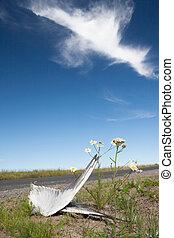 morto, pássaro, asas, e, flores, lado, de, a, estrada