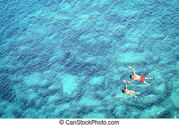 morze, para, woda, nad, snorkeling, prospekt