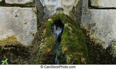 mos, kleine, waterval