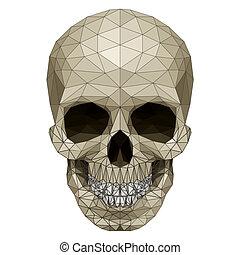 mosaïque, crâne