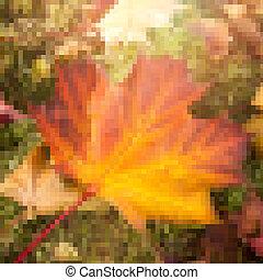 (mosaic), folha, maple