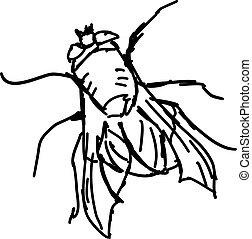 mosca, branca, esboço, experiência., vetorial, ilustração