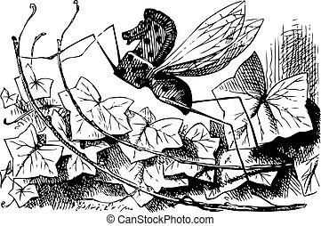 mosca, grabado, qué, allí, -, alice, espejo, libro, por, fundar, rocking-horse, original