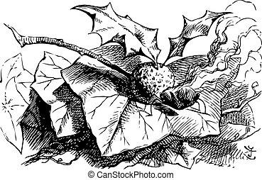 mosca, grabado, qué, snap-dragon, allí, -, alice, espejo, libro, por, fundar, original