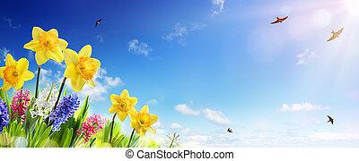 mosca, gramado, primavera, -, narcisos silvestres, fresco, andorinha, bandeira, páscoa